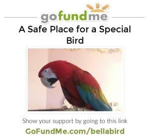 bellabird2414jpg